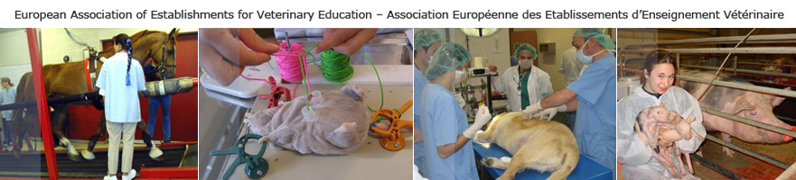 European Assotiation of Establishments for Veterinary Education - Association Européenne Etablissements d'Enseignement Vétérinaire